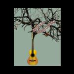Cliente Satisfeito empresa músicos m45 arte música artistas
